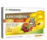 Arkoroyal Royal'Fruits Gelée royale Goji Grenade Baobab Solution buvable 20 Ampoules/10ml à Paris