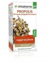 Arkogélules Propolis Bio Gélules Fl/45 à Paris