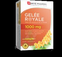 Forte Pharma Gelée royale 1000 mg Solution buvable 20 Ampoules/10ml à Paris