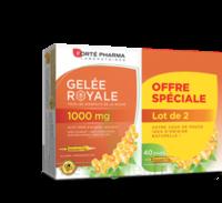 Forte Pharma Gelée royale 1000 mg Solution buvable 2*B/20 Ampoules/10ml à Paris