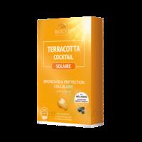 Terracotta Cocktail Solaire Comprimés B/30 à Paris