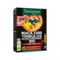 Santarome Bio Maca 1500 Tribulus Ginseng Gingembre Solution buvable 20 Ampoules/10ml à Paris